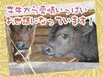 藤本畜産(株) やぶ牧場のアルバイト情報