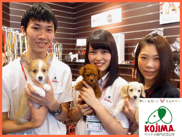 株式会社コジマ 3店舗合同募集のアルバイト情報