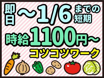 株式会社KDP ※広告No.170201-04のアルバイト情報