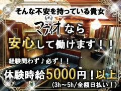 CLUB MATIO 〜クラブマティオ〜 [A][社](1)フロアレディ(2)バニー(3)ホール(4)エスコート