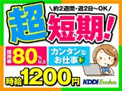 株式会社KDDIエボルバ 九州・四国支社/IA018467