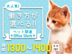 株式会社プラスアルファ 新宿支店<応募コード 10-F2-3>