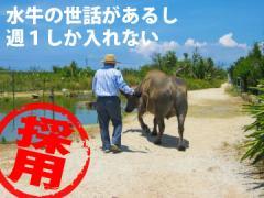 日東カストディアル・サービス(株) 沖縄支店