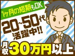 パーソルマーケティング株式会社(s2s50)